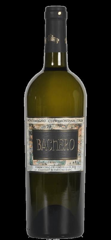 Bestel Bachero Verdicchio dei Castelli di Jesi bij Casa del Vino