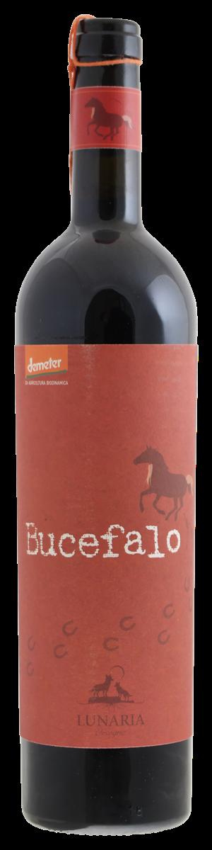 Bestel Lunaria Bucefalo bij Casa del Vino