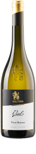 Bestel Kaltern Caldaro Pinot Bianco Vial bij Casa del Vino