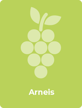 Arneis druif