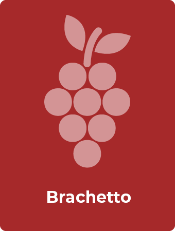 Brachetto druif