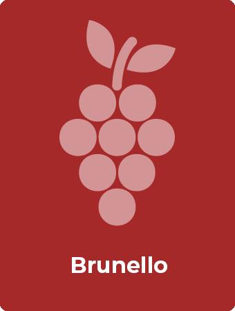 Brunello druif