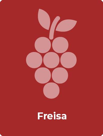 Freisa druif