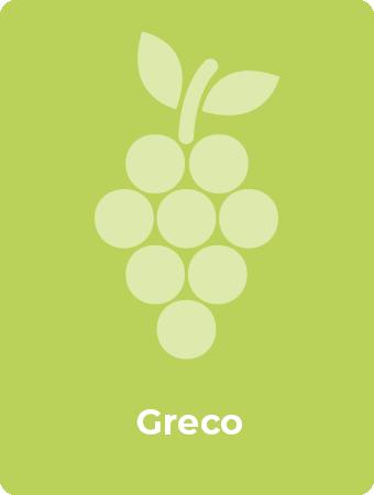 Greco druif
