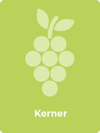 Kerner druif