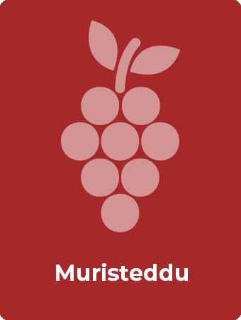 Muristeddu druif