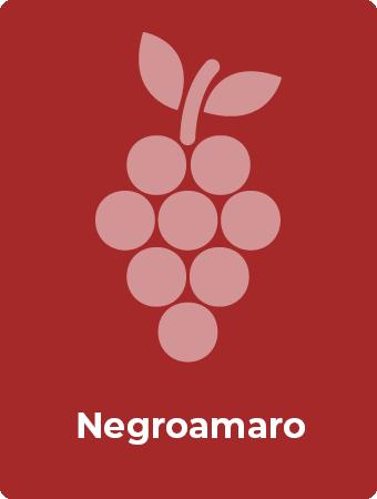 Negroamaro druif