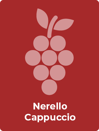 Nerello Cappuccio druif