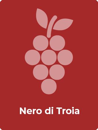 Nero di Troia druif